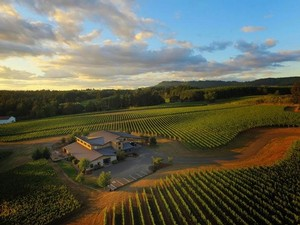 (Bird's-eye view of Trisaetum Winery on Ribbon Ridge)