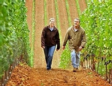 James and Andrea in the vineyard